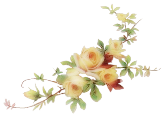The gallery for --> Png Images Rose Flowers
